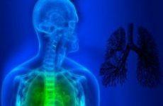 3D изображение человека и лёгких с соединительной тканью