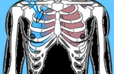 схема повреждения лёгкого внешним действием