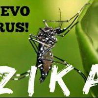 плакат о распространении лихорадки