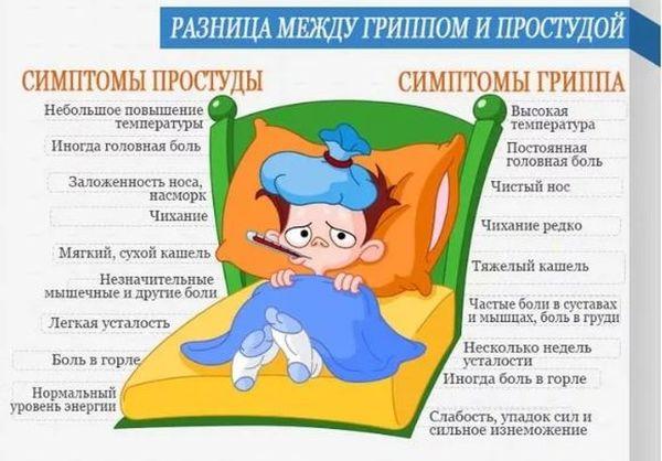 грипп и простуда отличия