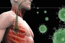 вирусы попадают в организм